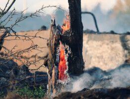 Dlaczego szkolenia przeciwpożarowe są takie ważne?